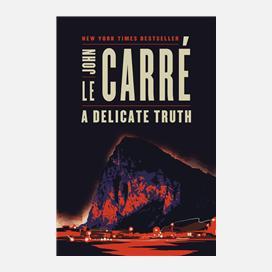 A Delicate Truth Ebook