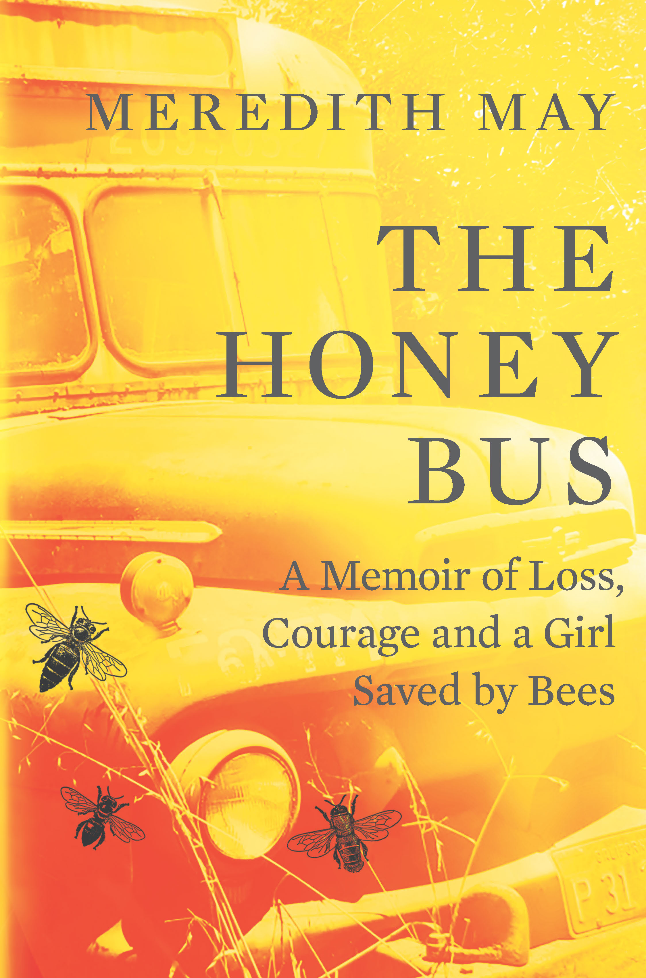 Image result for the honey bus